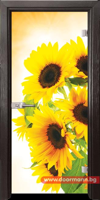 Стъклена врата модел Print 13-4 – Венге